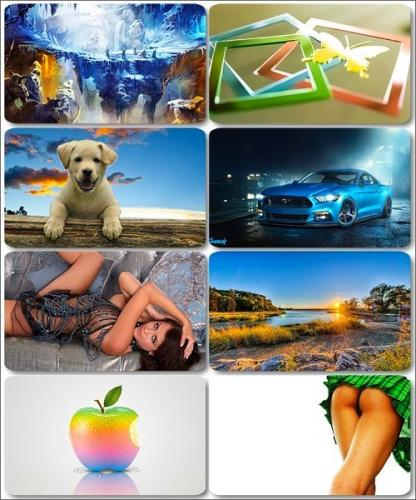 Mix colorful pictures - Desktop Wallpapers (part 15)