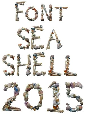 Seashells (letters and numbers) on a transparent background