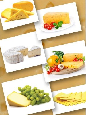 Milk products: cheese (the images)