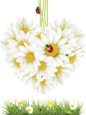 Painted daisies - photo stock