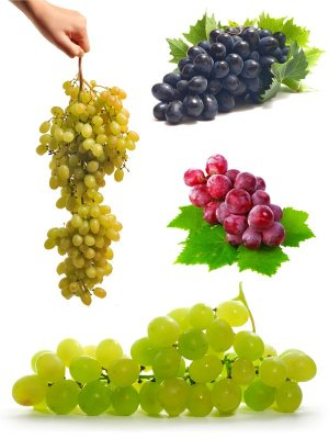 Grapes on a white background (the images)