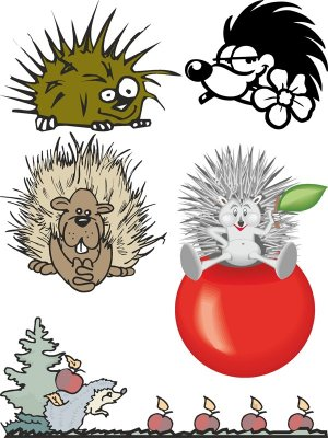 Hedgehog and porcupine (animals vector)