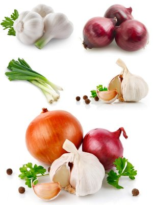 Onions and garlic (the images)