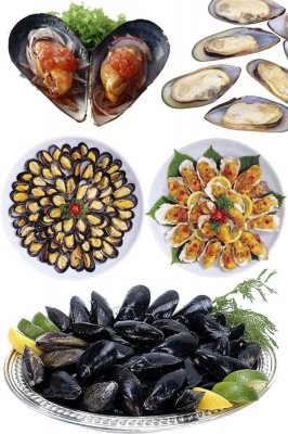 Dish of oysters and mussels (photo stock)