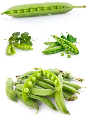 Peas and pea pods (the images)