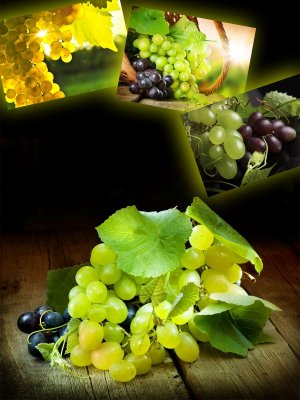 Grapes (the images)