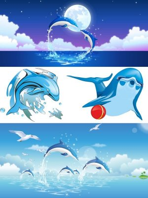 Vector Dolphins (selection of images)