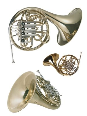 Wind Instruments: French horn (Graphics)