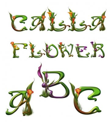 Alphabet: Flowers Calla (transparent background)