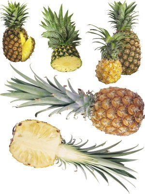 Pineapple and pineapple rings (transparent background), the second part
