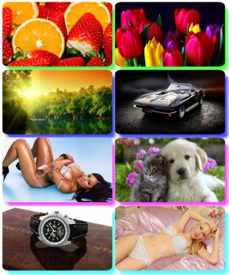 Mix Colorful pictures - Desktop Wallpapers (part 133)